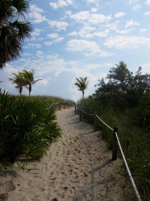 Florida 2013 1235